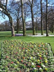 Manston Park in Leeds