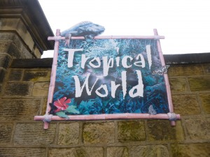 Attractions in Leeds Tropical World
